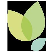Animal Tree Logo