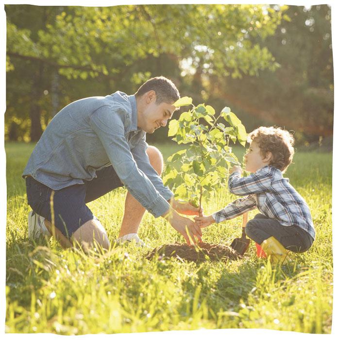 Pflanze einen Baum der Erinnerung mit Animal Tree.