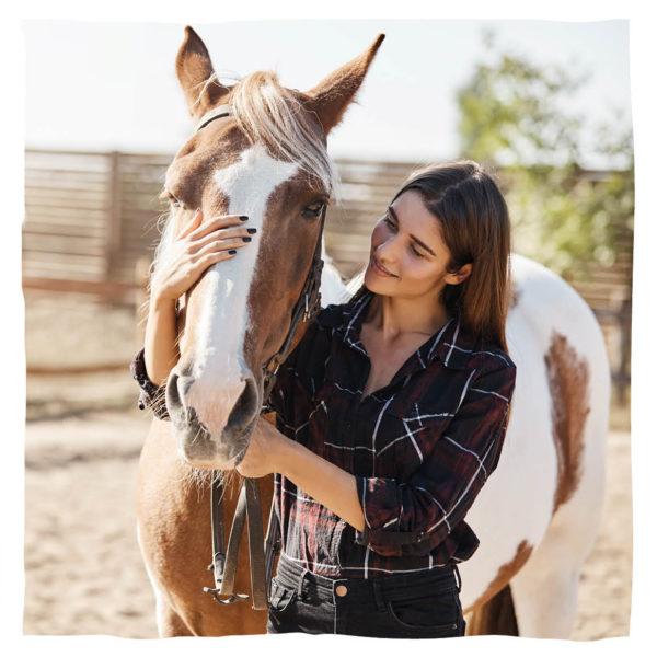 Animal Tree Pferdebestattung