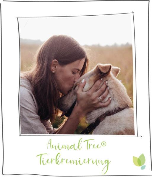 Animal Tree Tierkremierung