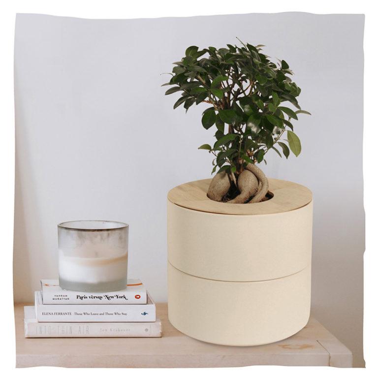 Keramik creme