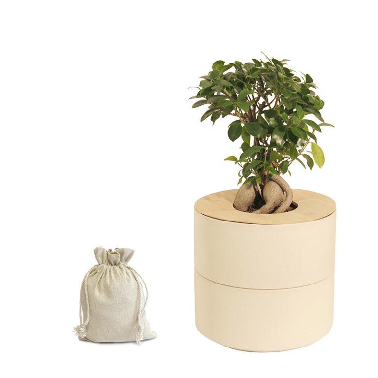 Keramik mit Bio-Urne_creme_ohne Fähnchen